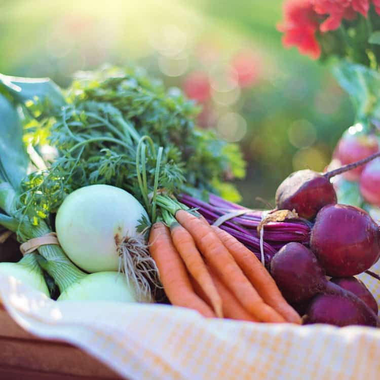 Image of food, fruits and vegetables from a farmer's market