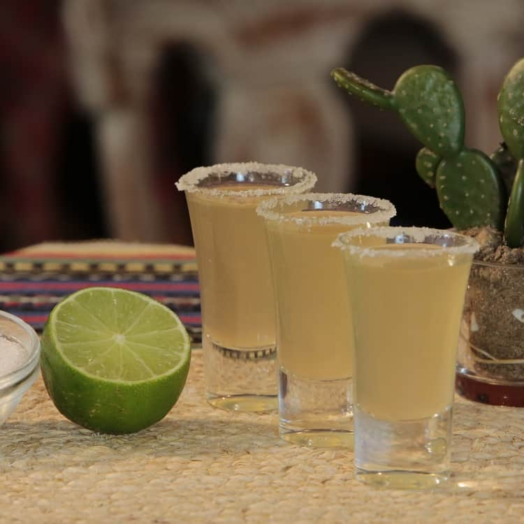 image of tequila cocktails